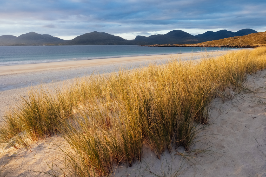 Beach scene with beach grass, sand, water, and mountains